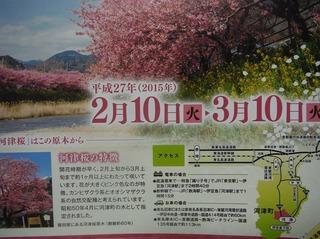 DSCF3653.jpg