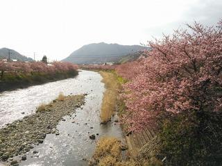 いでゆ橋2.jpg