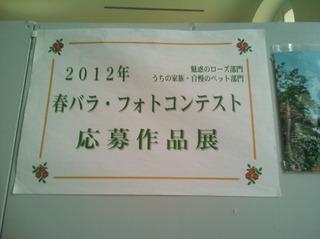 フォトコンテスト.jpg