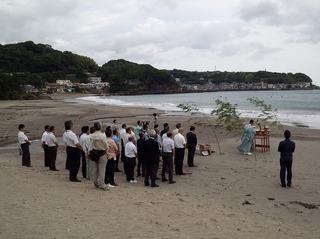 今井浜海岸.jpg