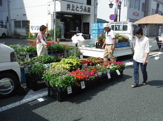 新城軽トラ市10.jpg