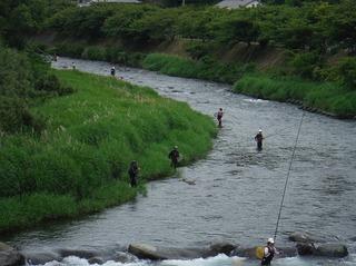 河津いでゆ橋上流側2.jpg